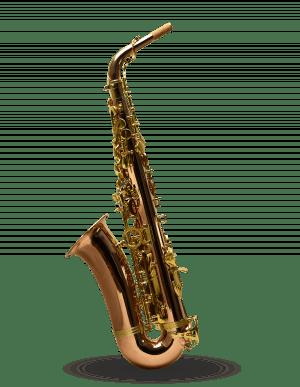 Saxofone Alto Dakapo Dssa1