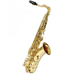 Saxofone Tenor Hoyden HTS 25L