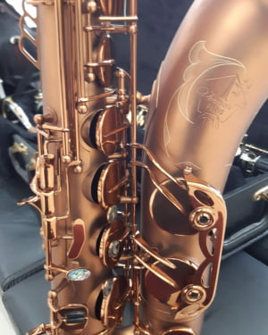 Saxofone Tenor Vermont Paris - Pequenas Avarias